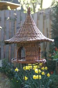 bird feeder in willow