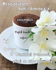 Pudding, Tableware, Desserts, Food, Sunday Pictures, Tailgate Desserts, Dinnerware, Deserts, Custard Pudding