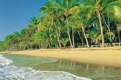 Cairns - Cape Tribulation by Australian Tours R Us, via Flickr