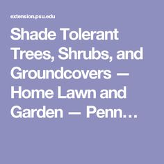 Shade Tolerant Trees, Shrubs, and Groundcovers — Home Lawn and Garden — Penn…