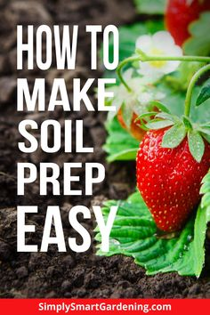 Good soil is the first step to a great garden! Find out how to get your garden ready for planting with these easy soil preparation tips. Autumn Garden, Spring Garden, Gardening For Beginners, Gardening Tips, Soil Texture, Soil Layers, Soil Improvement, Sandy Soil, Weed Seeds