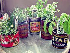 more tin can herb garden inspiration