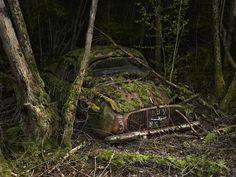 "Photographer Peter Lippman explores a world of abandoned cars overtaken by nature in a series of images entitled ""Paradise Parking. Abandoned Cars, Abandoned Buildings, Abandoned Places, Abandoned Vehicles, Abandoned Homes, Rat Rods, Pompe A Essence, Rust In Peace, Old Cars"