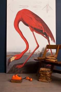 UK based Surface View digitally re-masters paintings and photographs, from the Natural History Museum and The National Gallery, into mega-sized murals, wall stickers, ceramic tiles and blinds. I'm inspired to get one for my own house – can you imagine having a large scale, 19th century JJ Audubon bird mural applied across an entire bathroom wall?! Pretty sick.