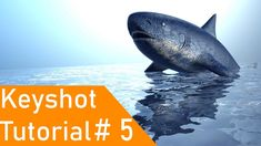 This tutorial is about how you can create realistic render of water in keyshot fallow the steps and create your own render. the Shark is created in Alies . Shark, Concept Art, Water, Conceptual Art, Sharks, Aqua