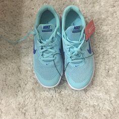 Wmns Nike Flex Experience RN Metallic Platinum Blue Volt