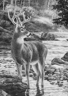 Deze tekening doet me denken aan de film Bambie. Ik vond dit ALTIJD al een mooie film.