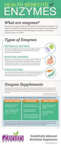 THE BEST SUPPLEMENT TO ENHANCE PERFORMANCE! Health Benefits Of Enzymes. What are enzymes? Types of enzymes - Metabolic enzymes, Digestive enzymes, Food enzymes. Enzyme Supplements. Best supplements from Zenith Nutrition. Health Supplements. Nutritional Supplements. Health Infographics