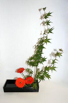 Ikebana, Moribana Basic Upright Reversed | Flickr: partage de photos!