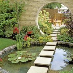 modern landscaping pond with aquatic plants