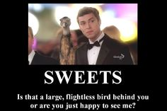 Sweets by emoplusramenluver on DeviantArt Dr Bones, Bones Show, Lance Sweets, John Francis Daley, Bones Tv Series, Frying Pans, Tv Quotes, Ahs, Criminal Minds
