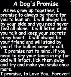 A Dog's Promise....each of my angels kept their promise...now be sure to find me at The Bridge...:)))))
