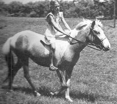 Misty (aka Misty of Chincoteague) All The Pretty Horses, Beautiful Horses, Animals Beautiful, Andalusian Horse, Friesian Horse, Arabian Horses, Palomino, Chincoteague Ponies, Chincoteague Island