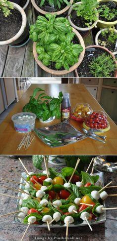 Fresh Basil Recipe - Caprese Bites