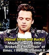 About Steve and Bucky