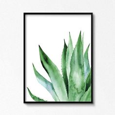 Agave Plant Art Tropical watercolor leaves Leaf botanical artwork Printable posters ARTbyASolo illustrations Green Office Wall Decor This beautiful watercolor printable. Watercolor Plants, Watercolor Leaves, Watercolor Art, Art Tropical, Tropical Posters, Tropical Artwork, Tropical Leaves, Art Aquarelle, Watercolor Paintings