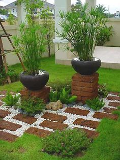 Love the contrast of the papyrus and the black pots!   Also like stacking the bricks underneath!