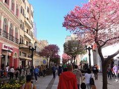 Rua XV de Novembro(15th of November Street) - Curitiba, Paraná.