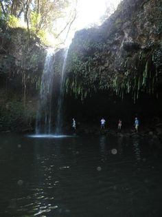 Twin Falls Maui (HI): Top Tips Before You Go - TripAdvisor
