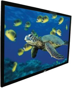 """Elite Screens R120WH1 ezFrame Fixed Projection Screen (120"""""""