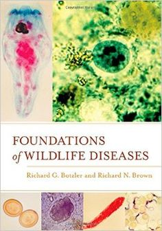 Foundations of Wildlife Diseases is a comprehensive overview of the basic principles that govern the study of wildlife diseases. The authors integrate theoretical foundations with a thorough examination of the factors that can affect the health and fitness of animals. They include specific information on a wide array of infectious agents such as bacteria, viruses, arthropods, fungi, protista, and helminths, as well as immunity to these agents.