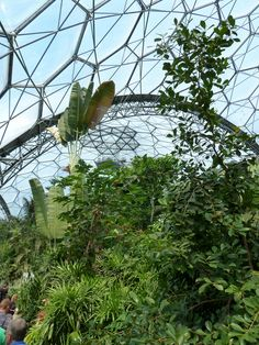 The Eden Project, Cornwall. Virtual Travel, Eden Project, Truro, Geodesic Dome, Outdoor Sculpture, Biomes, Environmental Art, Land Art, Amusement Park