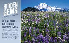 Mount Baker Snoqualmie National Forest: North Carolina