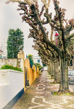 The cobble stone streets of the Azores Rene Triay Photography