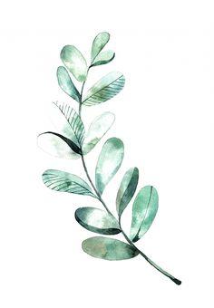 Watercolor Leaf, Watercolor Plants, Watercolour Painting, Painting & Drawing, Watercolor Pattern, Leaf Drawing, Watercolors, Simple Watercolor Flowers, Plant Painting