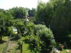 Kiadó nyaraló, apartman, szállás a Körös-partján- Kenderföldi üdülősor 21. - Bérelhető vízparti üdülőház
