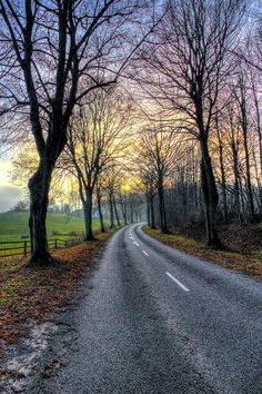 Country road (Møn, Denmark) by Kim Schou cr.c.