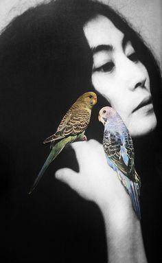 "arpeggia:  Emilie Halpern- Yoko, 2010, archival inkjet print edition 1 of 3, 10.75"" x 15.75"" Image source:Art Palace Gallery"