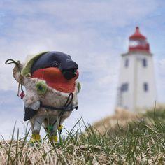 Всем доброе утро!)))) Снегирёк родился в Норвегии, успел побывать на острове Hornoya и теперь улетает в Лондон к замечательной семейной паре Nick and Nic. Он - художник, она - писательница.  Вчера открытие выставки было VERY GOOD))) #handcrafted #nortnorway #vadso #norway #irinacherepanova #scandinavia #paperkley #scolpture #dolls #doll #artdoll #instalaik #instalove #artist #artwork #handmade #dollcollection #авторскаякукла #кукла #коллекционнаякукла #скульптура #ooak #workinprogress…
