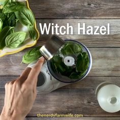 This amazing DIY face cream recipe is made with fresh basil leaves, nourishing h. This amazing DIY face cream recipe is made with fresh basil leaves, nourishing hemp oil Hemp Oil Skin, Aloe Vera Creme, Diy Beauté, Diy Crafts, Tips Belleza, Oils For Skin, Homemade Beauty, Cream Recipes, Herbalism