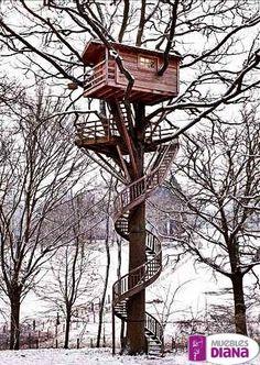 Tu sueño de la infancia, una casa en el árbol.