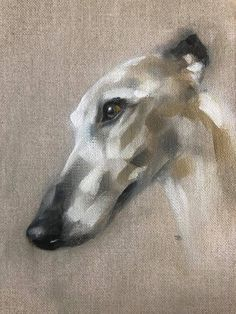 Willow By Julie Brunn - Happy Tiere Animal Paintings, Animal Drawings, Art Drawings, Greyhound Art, Most Beautiful Dogs, Art Sculpture, Dog Portraits, Dog Art, Figure Painting