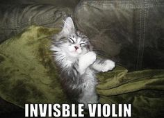 violin wish I was talented enough to play the invisible violin. Probably souns a lot better. ;)