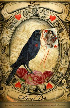 "Crows Ravens:  #Raven ~ ""Love Never Dies,"" by Foxfires (Aimee Stewart), at deviantART."