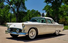 1956 Ford Thunderbird, port hole windows. I want one of these for graduation but in light yellow or mint green!