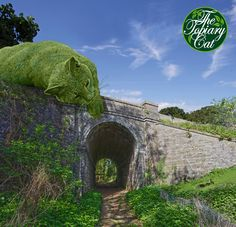 The Topiary Cat dozing on a bridge spots a couple of grazing bunnies.