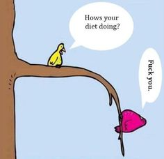 Human nature, we have all had moments when we have our mind and body set on dieting but we fail to actually put in the effort that is needed. Humor, the heavier bird is supposed to have been dieting but clearly it has not.