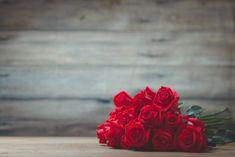 Rote Rosen sind der Inbegriff eines romantischen Geschenks. Wusstest du aber, dass die Anzahl roter Rosen im Strauß eine bestimmte Bedeutung hat? Valentine Day Gifts, Flowers, Plants, Fun, Knowledge, History, Romantic Gestures, Romantic Gifts, Historia