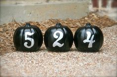 {house-number pumpkins} #halloween #halloweenoutdoors #halloweenparty