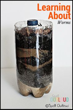 Learning About Worms with toddlers and preschoolers. A great way to bring nature observation in-doors!