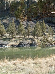Crooked River is a great place to spend the afternoon catching trout on the fly.