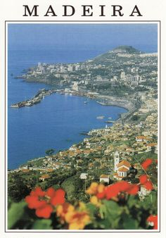 Madeira, Portugal a def place I want to go! See where my dad grew up!!