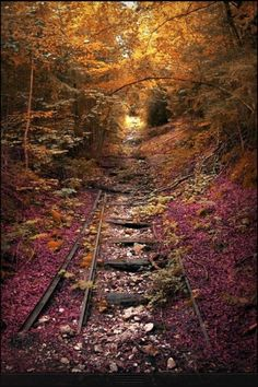 Old train tracks ..