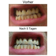 http://www.ecinfo.de/kraus/