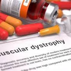 We are one of the leading and reasonable Muscular Dystrophy Treatment providers in India. This is a social event of procured ailments that damage and cripple your muscles after some time. This mischief and shortcoming is a direct result of the absence of a protein called dystrophin, which is imperative for ordinary muscle work. The nonappearance of this protein can realize issues with walking, swallowing, and muscle coordination. Get the more information about us from our website.