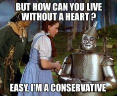 Tories rely on stupidity and Stories ( Scum Of The Earth, Flat Earth Society, Leader In Me, Conservative Republican, Angry Cat, Jeremy Corbyn, Brave New World, Right Wing, Satire